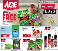 Catalogue Ace Hardware from 09/01/2020