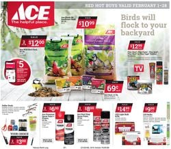 Catalogue Ace Hardware from 02/01/2021
