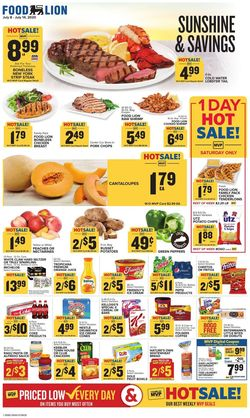 Catalogue Food Lion from 07/08/2020