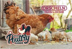 Catalogue Orscheln Farm and Home from 02/01/2020